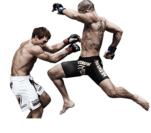 UFC Ultimate Fighting Championship [PC,Xbox One and PS4 ...
