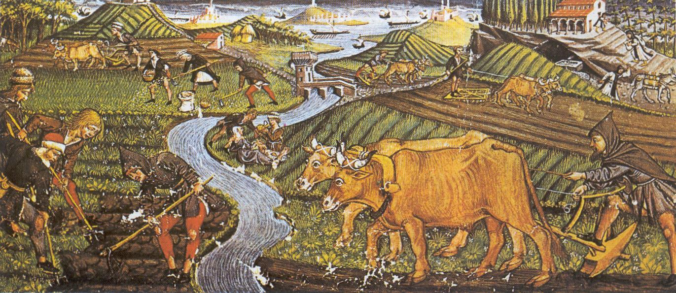historia de la tenencia de la tierra: