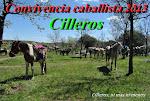 CONVIVENCIA CABALLISTA 2013
