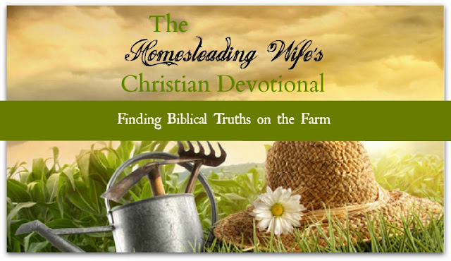 The Homesteading Wife's Christian Devotional