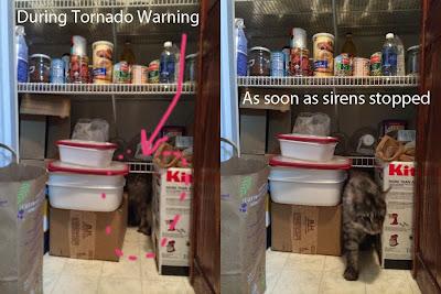 Stalone during tornado warning