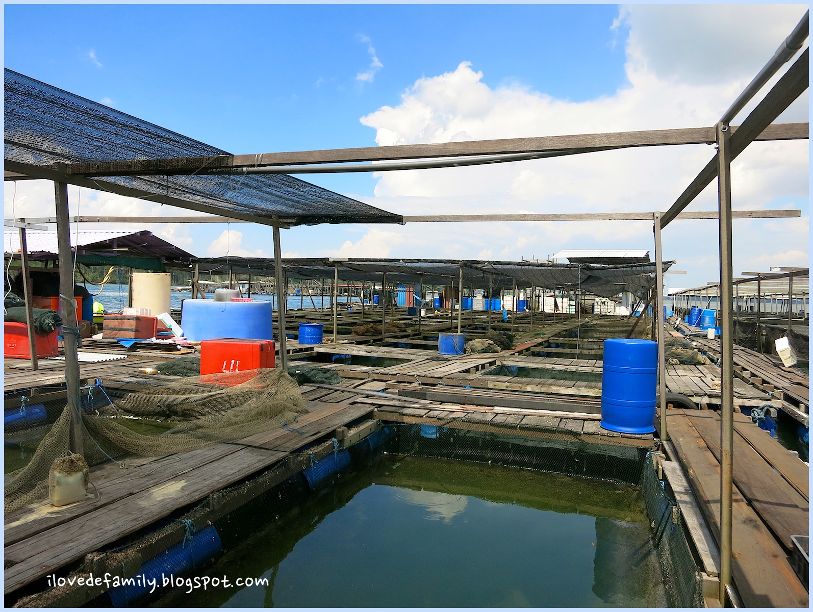 b c d e that s us our first time to a kelong fish farm