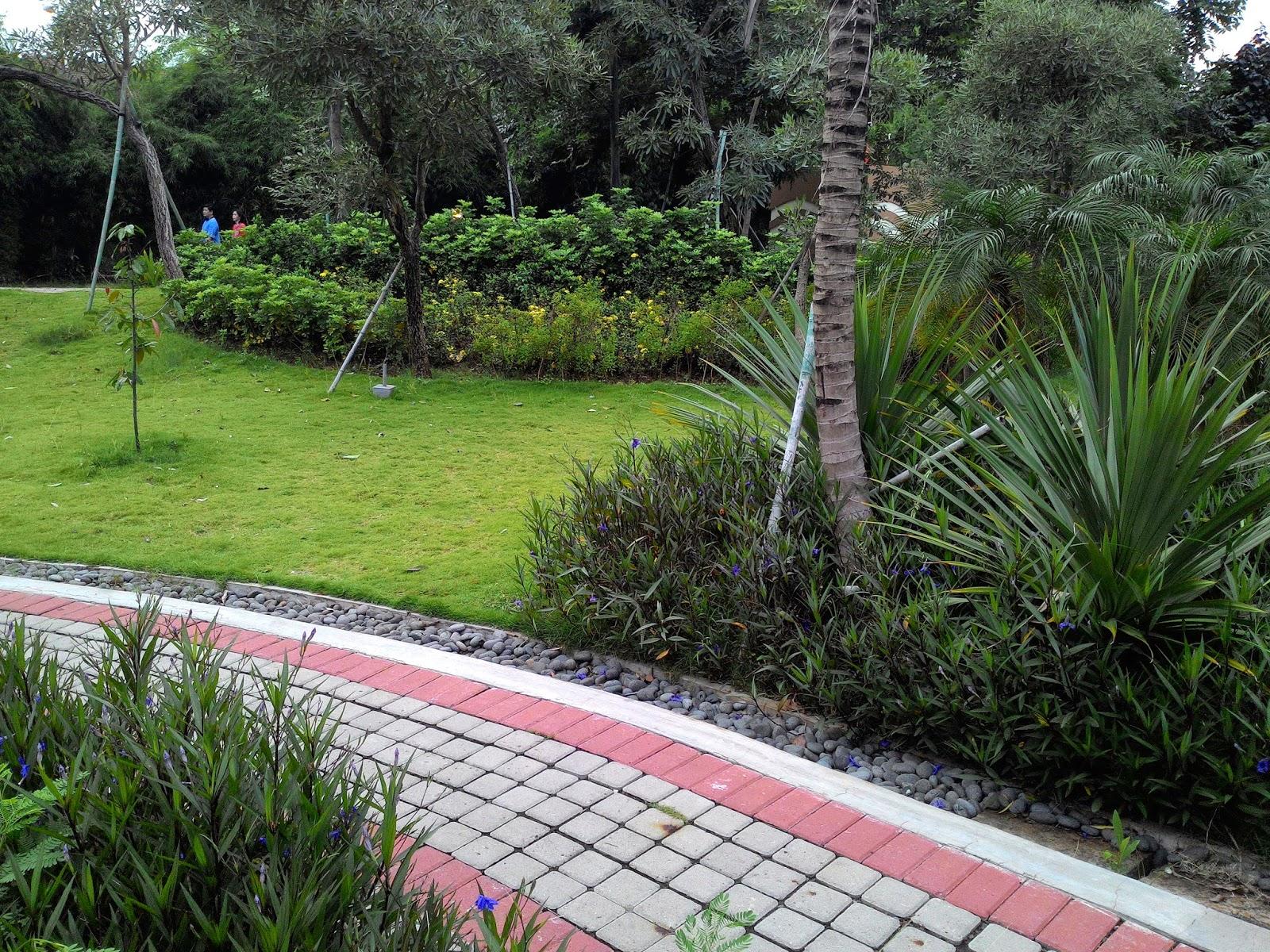 Backyard garden design inspired public park Backyard