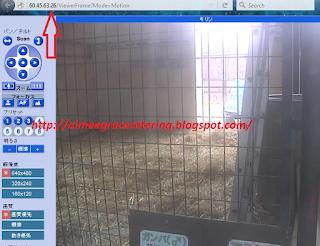 Ini Dia Cara Lihat CCTV di Berbagai Penjuru Dunia Lewat Internet