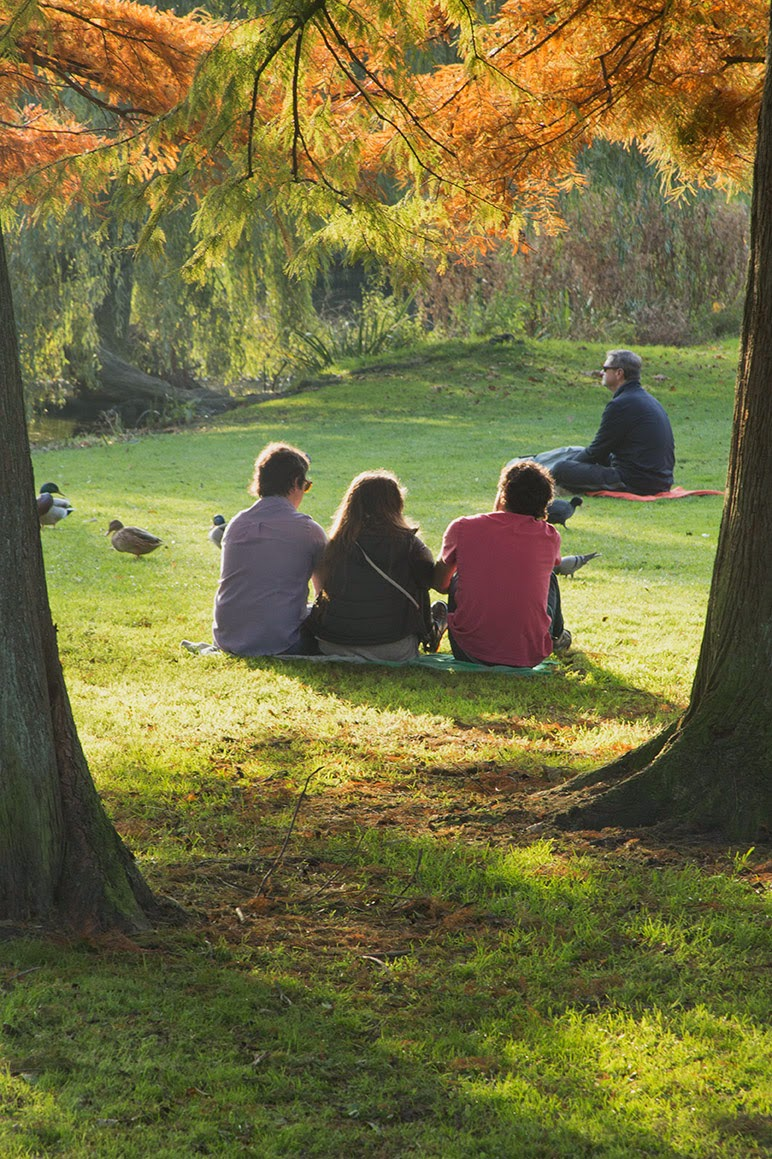 three people sitting in the park