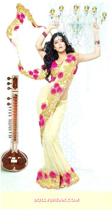 Shruthi hassan in saree with guitar in background - Shruthi hassan Latest Hot Wallpaper 2012 in Saree