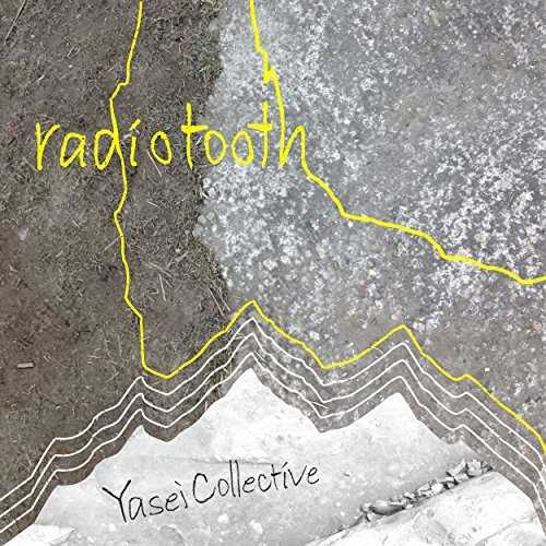 [Single] Yasei Collective – radiotooth (2015.11.25/MP3/RAR)
