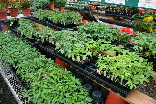 The flower bin april is national gardening month - Vegetable garden what to plant in april ...