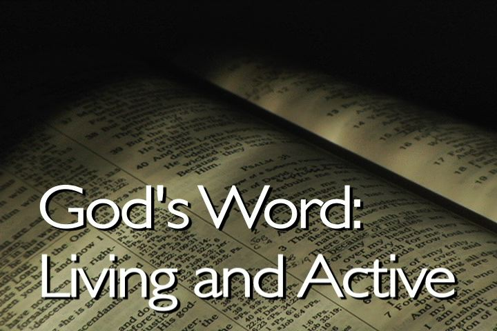 gods word in schools What the bible says about government  now taking god out of the schools,  hasn't really the understanding of gods' grace or word to start with and has.