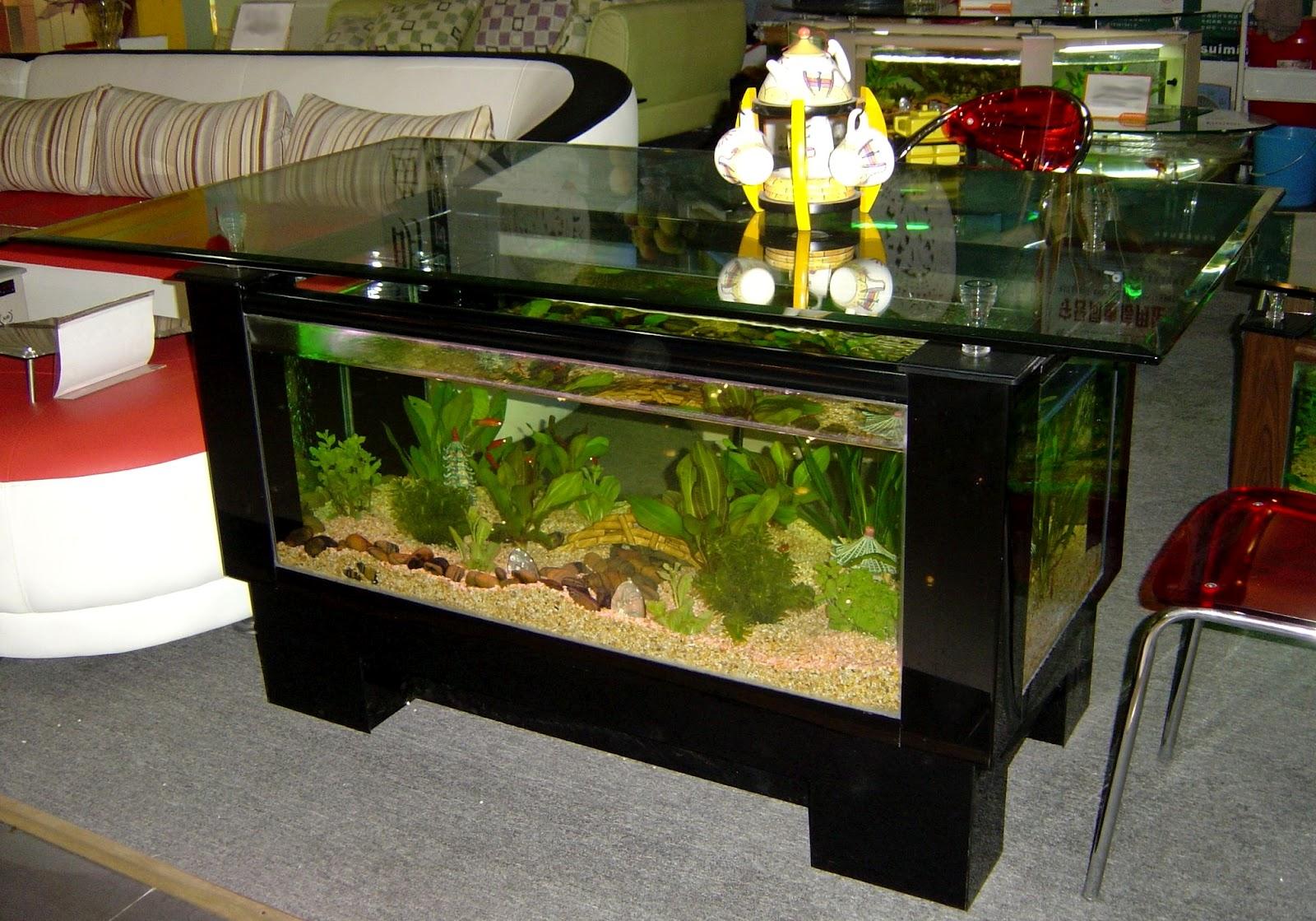 Exclusive Aquarium Design - Home aquarium design