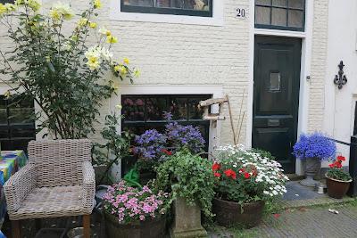 container garden, urban garden, flowers, Haafner
