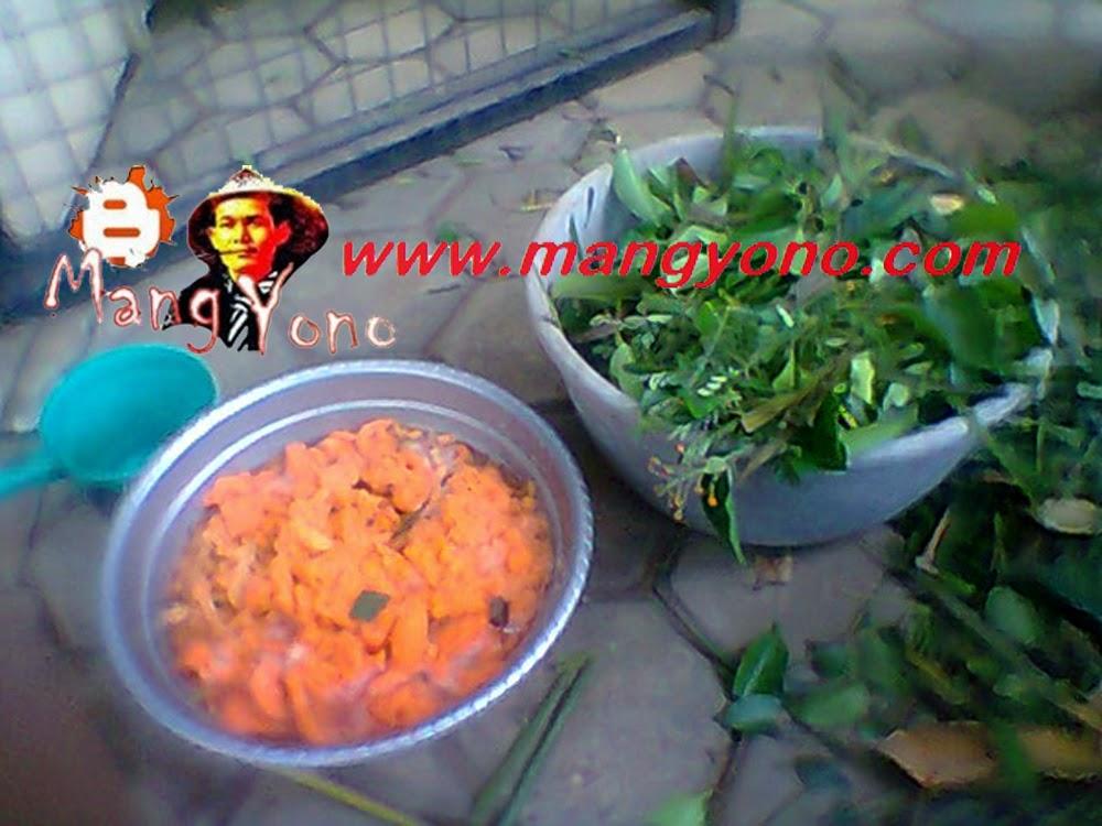 Memanfaatkan daun dan sisa makanan untuk pupuk organik
