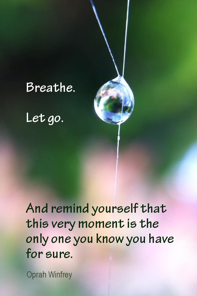 visual quote - image quotation for MINDFULNESS - Breathe. Let go. And remind yourself that this very moment is the only one you know you have for sure. - Oprah Winfrey