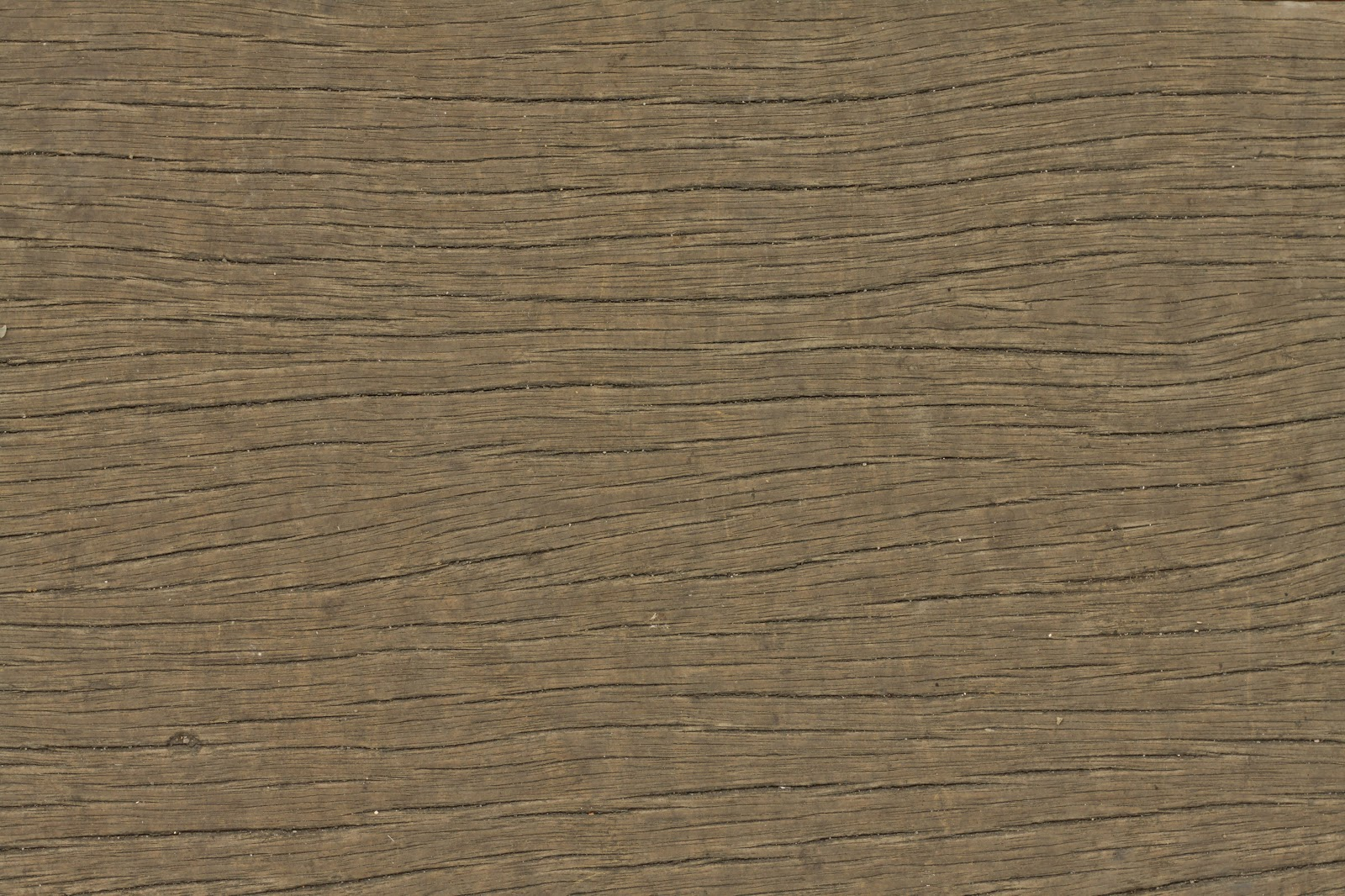 Wood dry cracked bench plank tree bark texture ver 18