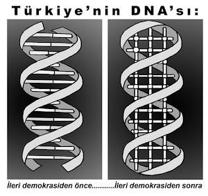 Türkiyenin DNA'sı