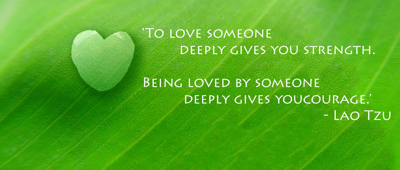 Quote Of Love Facebook Cover Free Download