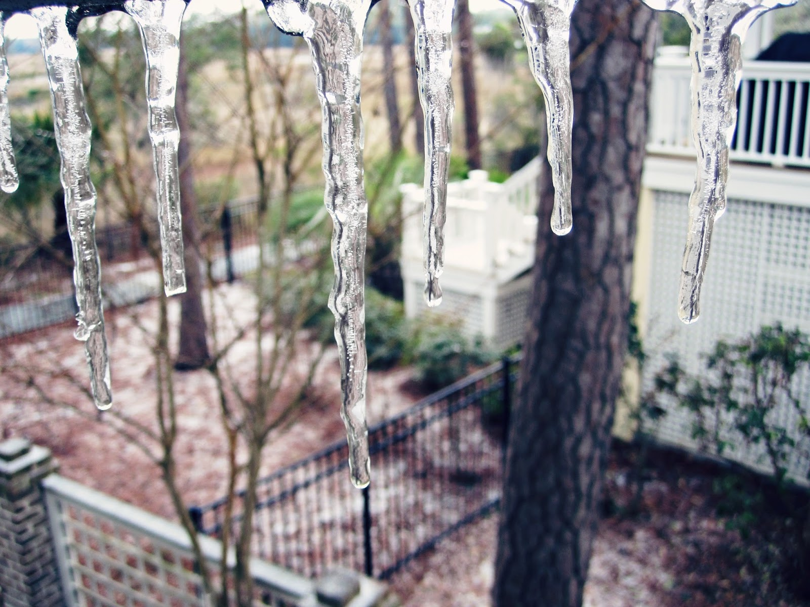 Snow Day, snow, icicles, blizzard