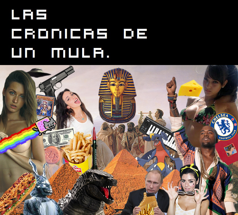 Las Cronicas De Un Mula
