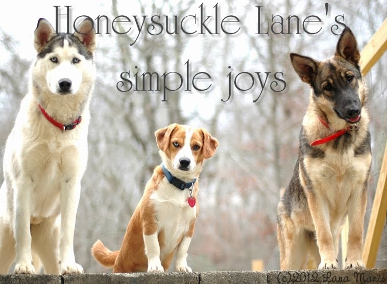 Honeysuckle Lane