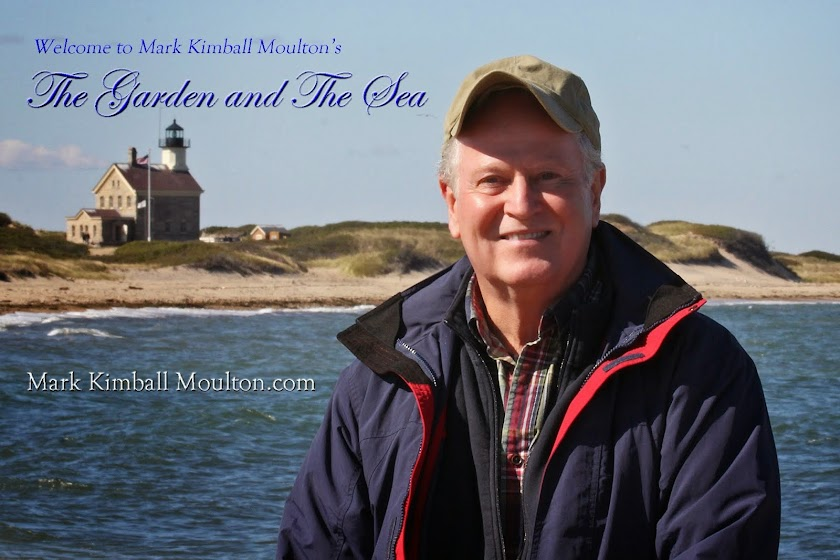 Mark Kimball Moulton  Author/Photographer