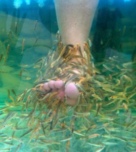 Quote unquote march 2012 for Fish eating pedicure