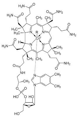 Kobalamin Vitamin B12