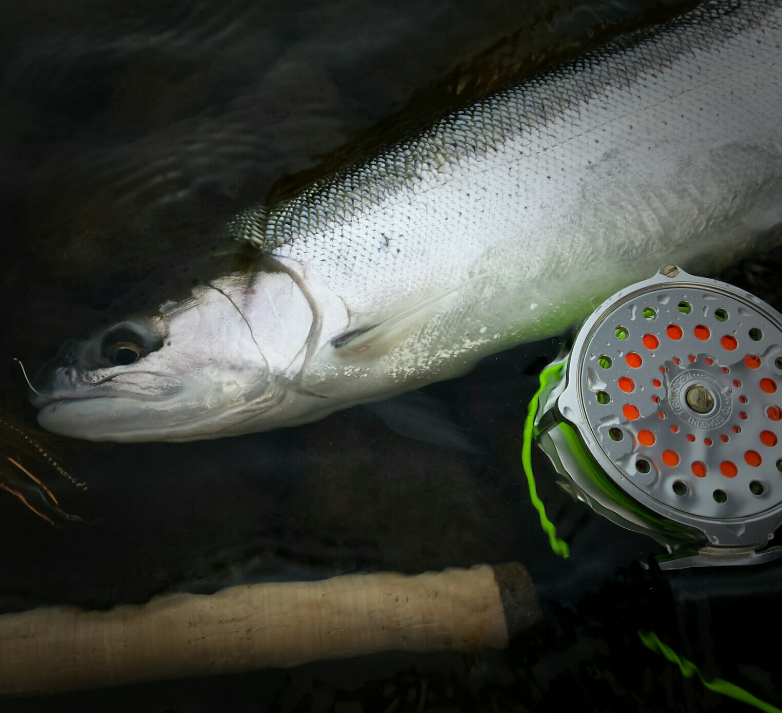 Gorge fly shop blog going old school click pawl reels for Fishing reel ringtone