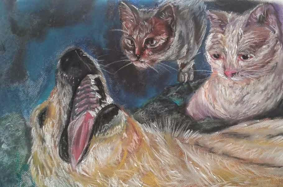 cabezas de dos gatos y un perro