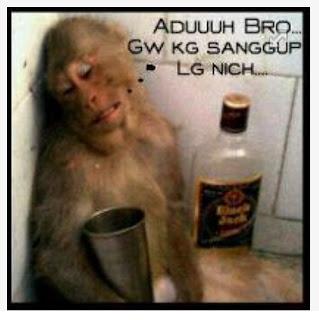 gambar Monyet Galau yang gokil alamak galau bener kayaknya