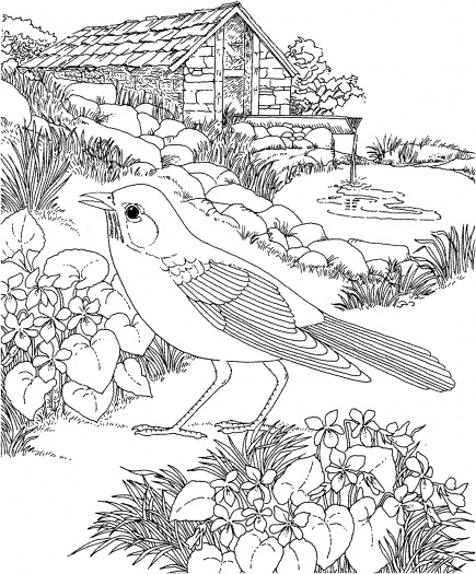 Coloring Pages for Kids: Flower Garden Coloring Pages for Kids