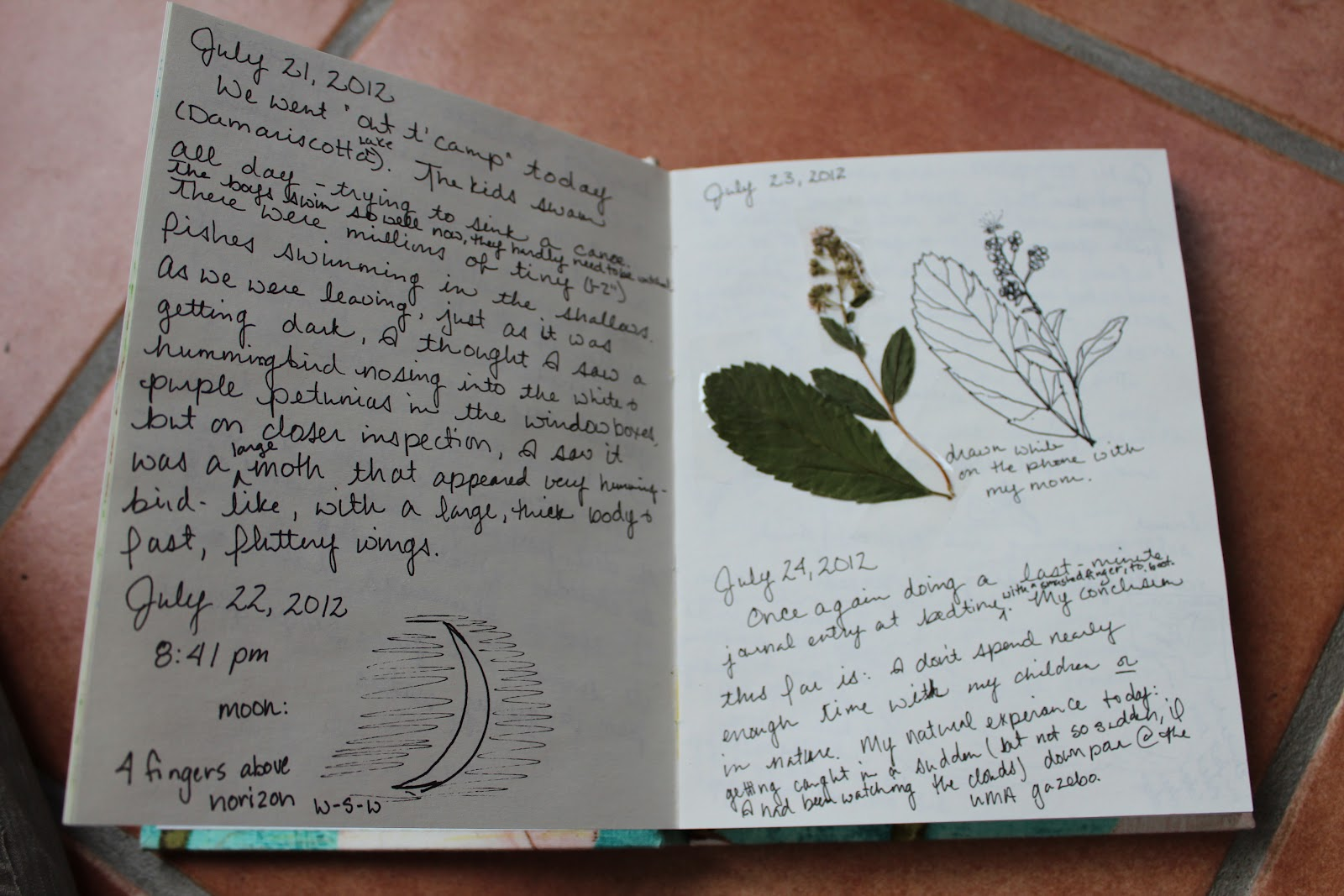 nature journal writing