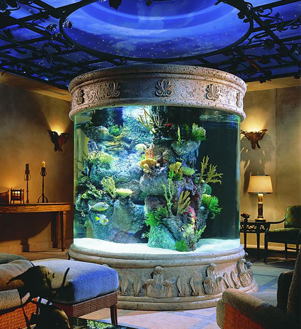 10 amazing aquariums