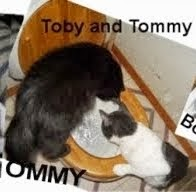 Toby and Tommy