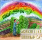 Agricultura Biodinâmica no Santuário