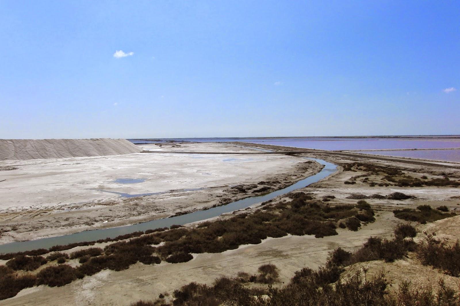 Francia saline di Aigues Mortes