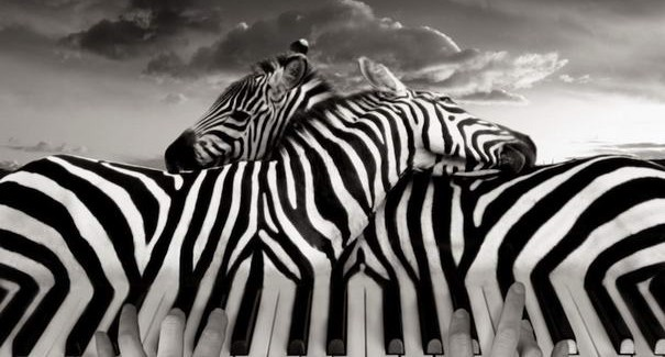Mind-blowing Surreal Photo Montages by Thomas Barbéy
