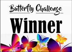 3 x Butterfly Challenge Winner