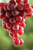cacho de uva