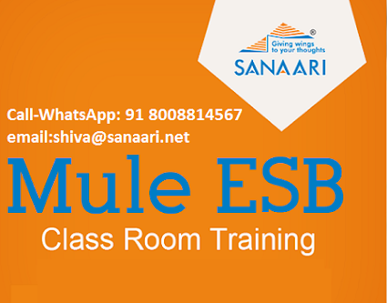 Mule ESB Class room Training in Madhapur