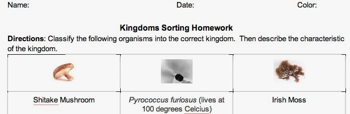 Mrs Reeds Science Class 6 Kingdoms Sort HW – 6 Kingdoms Worksheet