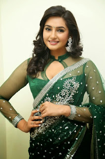Actress Ragini Dwivedi  Pictures in Saree at Jenda Pai Kapiraju Audio Launch 0043