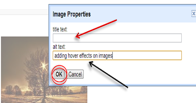 adding alt tag to images