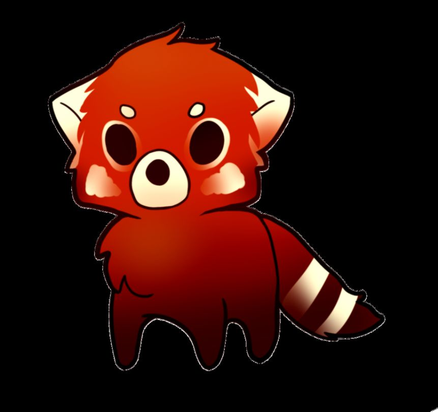 Red Panda Drawing Chibi  Best Animals Galleries