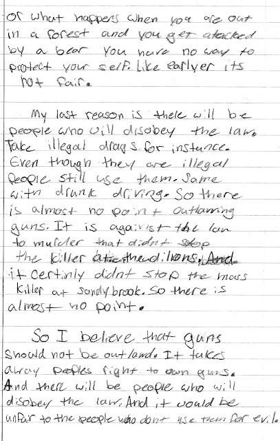 Guns and kids essay
