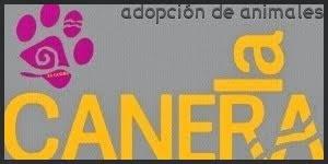 ADOPCIONES LA CANERA