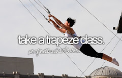 i want to take flying trapeze lessons