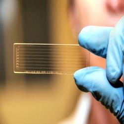A promessa de exame que detectam câncer precocemente