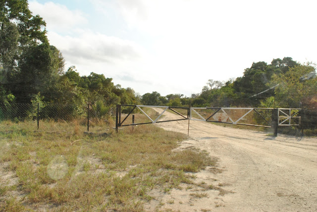 Saadani National Park Tembea Tanzania