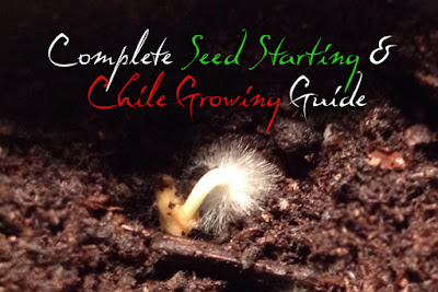 Complete Seed Starting and Chile Growing Guide
