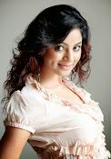 Shilpi sharma sizzling photos-thumbnail-32